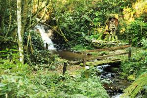 lucio-passos-parque-historico-iguassu-2